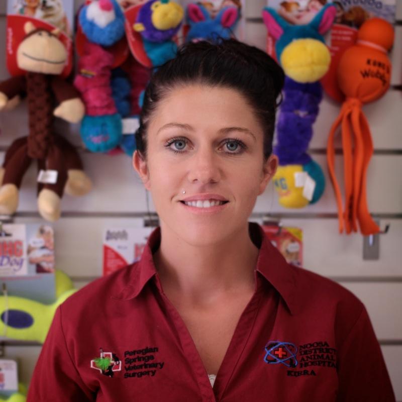 henrygloverfilms, photography, portrait, business, Noosa District Animal Hospital, Sunshine Coast, Queensland, Australia